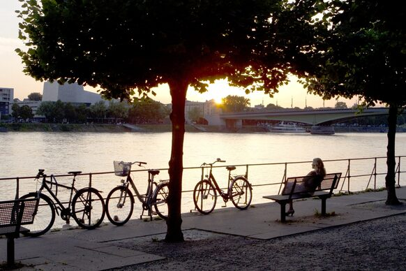 Bicycles on the rhine